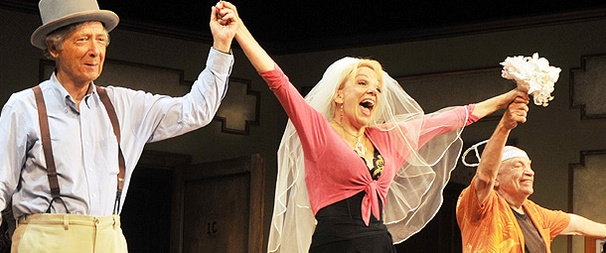 New Sex Farce Viagara Falls Swings onto Off-Broadway