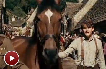 War Horse on Film: Watch the Trailer for Steven Spielberg's Movie