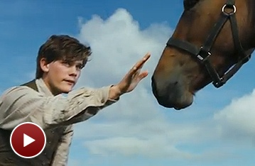 Joey on the Big Screen! Watch the New Trailer for Steven Spielberg's War Horse