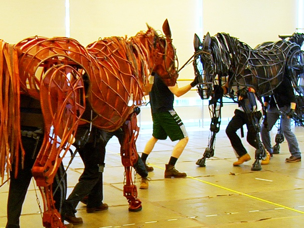 Giddyup! Tony-Winning Broadway Play War Horse Hits the Road