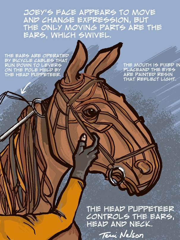 Check Out Local Portland Artists' Drawing of War Horse's Loyal Star Joey