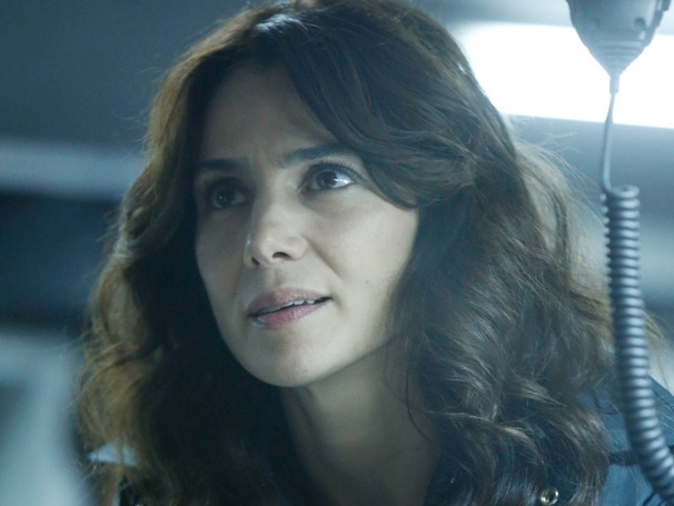 What's Up, Annie Parisse? The Following Star Talks Broadway Serial Killers and Clybourne Park's Tony Win