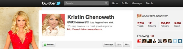 Kristin Chenoweth's Year On Twitter: Star Dishes on Wicked, Jersey Shore and More