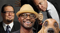 This Week's Picks! Adopt a Pup, Rise and Shine with Taye Diggs & More