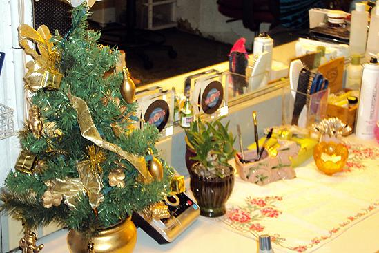 Seasonal Snapshots at Memphis 2009 – dressing table