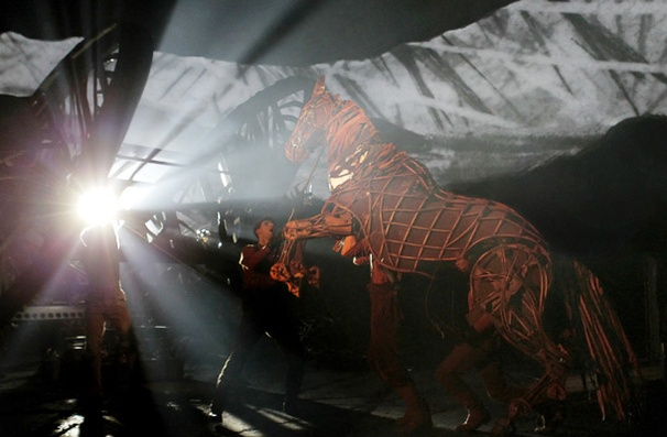 Show Photos - War Horse - cast 3