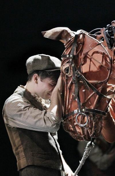 Show Photos - War Horse - Seth Numrich