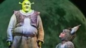 Brian d'Arcy James as Shrek and Daniel Breaker as Donkey in Shrek.