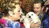 Fierstein, Davis and Clarke Thorell paw a pup.