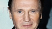 Harry Potter 7 – Liam Neeson