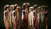 The Lion King - Show Photos - cast 6