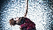 Gotta Dance! Allyson Carr of <I>Mamma Mia!</I> - 4