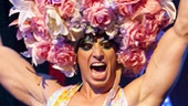 Show Photos - Priscilla Queen of the Desert - Nick Adams