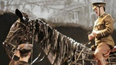 Show Photos - War Horse - cast