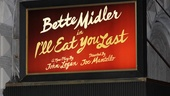 I'll Eat You Last- Booth Theatre