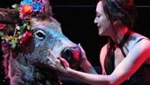 Show Photos - A Midsummer Night's Dream - Bebe Neuwirth - Steven Skybell
