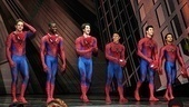 Spiderman Final  cast 2