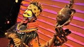 Lion King Exhibit- Rafiki Costume