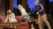 Robert Sella, Annaleigh Ashford and Matthew Broderick in Sylvia