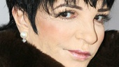 Cabaret 40th Anniversary  Liza Minnelli
