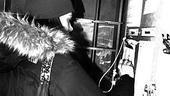 Sutton Foster backstage at Shrek – signing