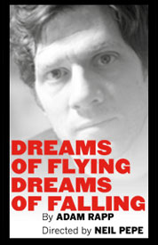 Poster for Dreams of Flying Dreams of Falling