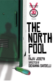 Poster for The North Pool