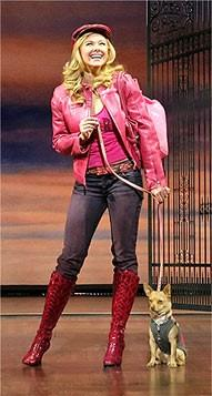 Legally Blonde's Next Elle Woods to Be Cast Via MTV ...