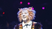 Cats - Opening - 7/16 - Emilio Madrid-Kuser
